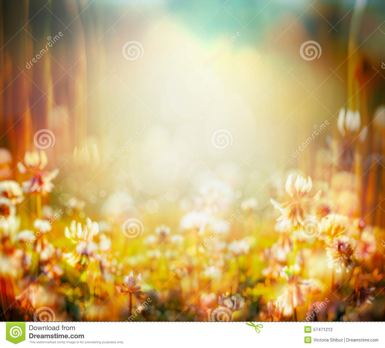 Fall Leaves Watercolor Wallpaper Autumn Or Summer Blurred Nature Background With Flowers