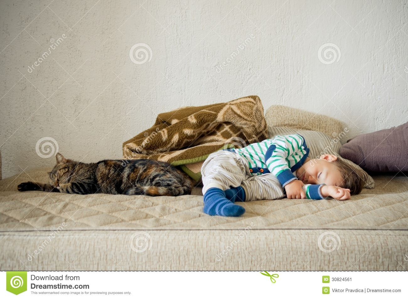 Baby Relax Toddler Bed Baby Boy And Cat Sleeping Together Stock Image Image Of