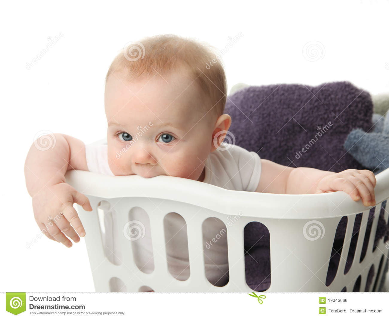 Baby Laundry Bin Baby In A Laundry Basket Royalty Free Stock Image Image