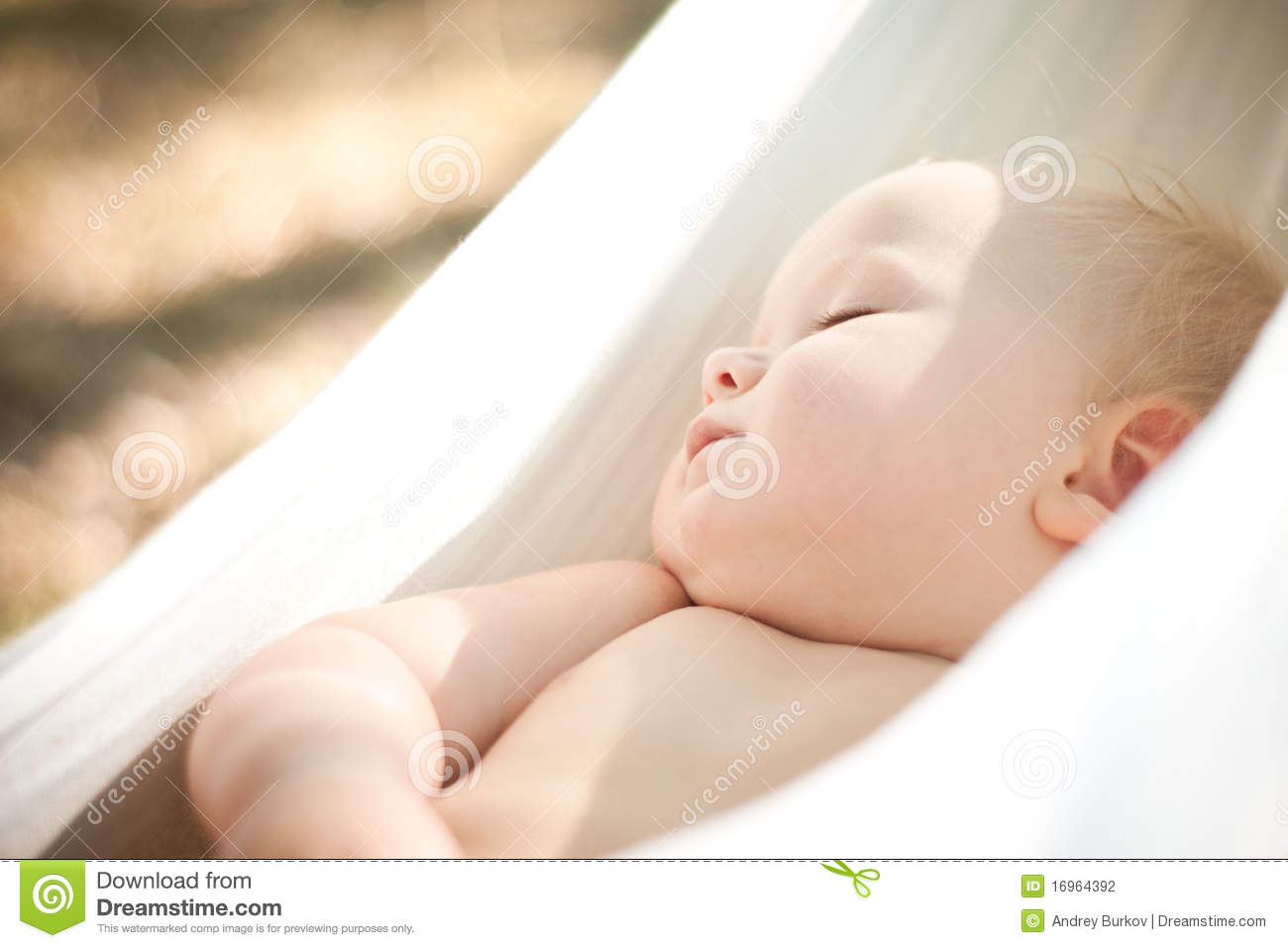 Baby Girl Blog Baby Sleep Quiet Into Hammock Stock Photo Image Of