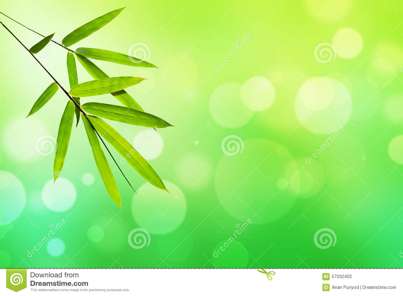 Blur 3d Wallpaper Bamboo Leaf And Green Nature Light Bokeh Background Stock