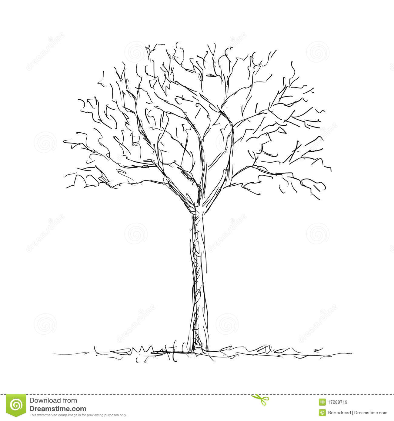 Bare Tree Template Bare Tree Coloring Page