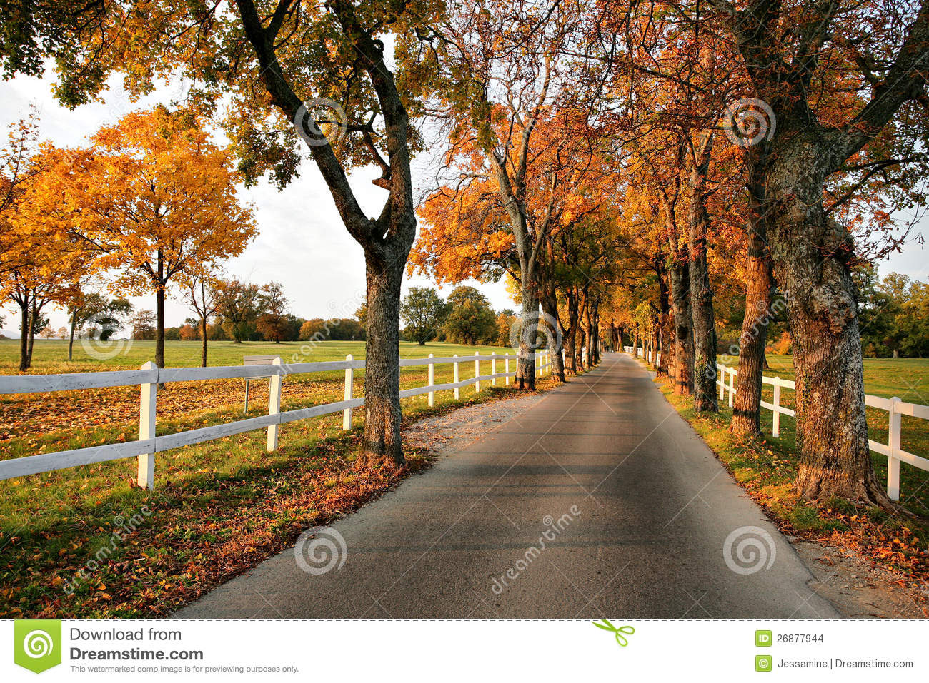 Fall Farm Wallpaper Beautiful Country Road In Autumn Stock Photo Image Of