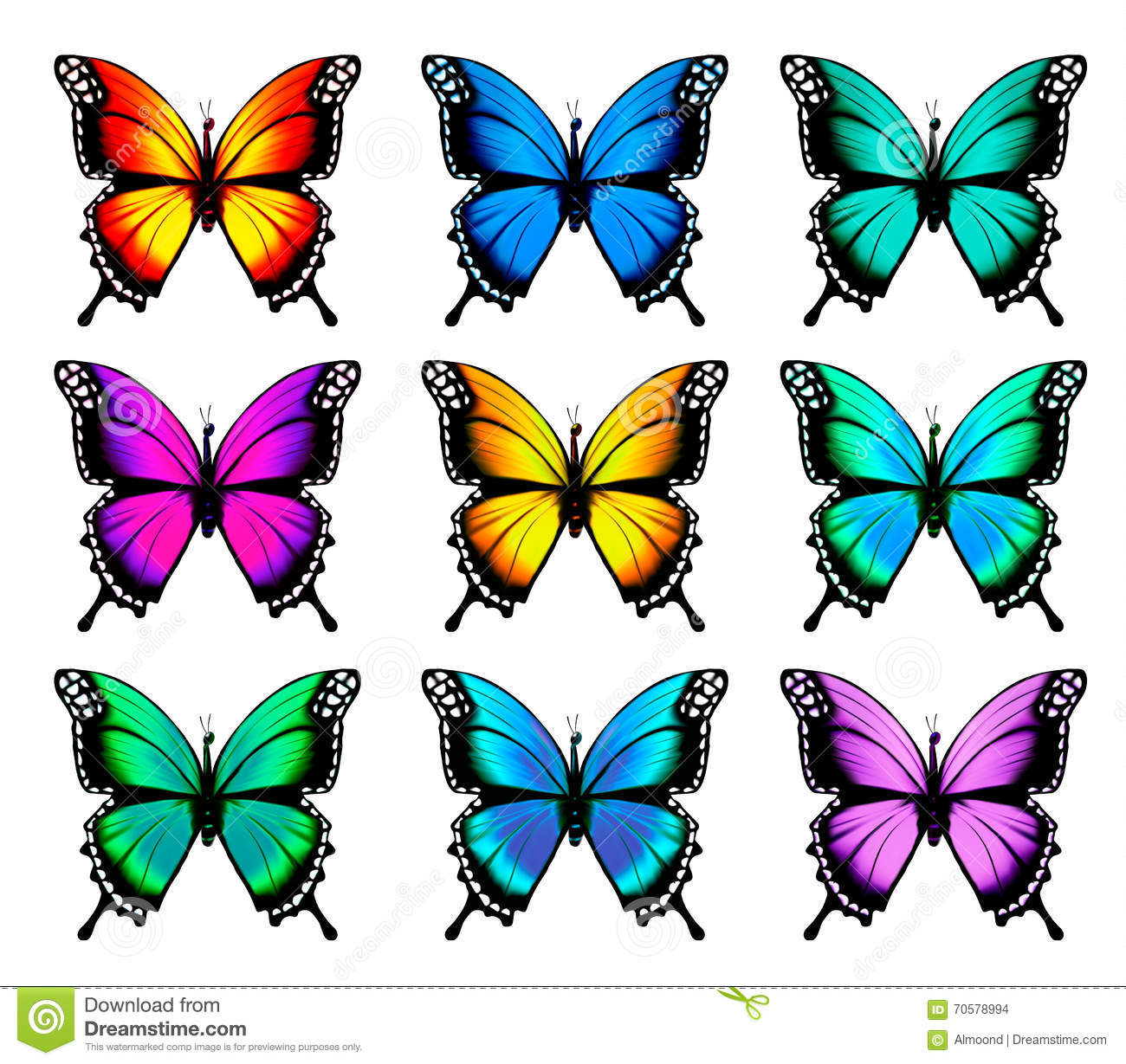 butterfly template free