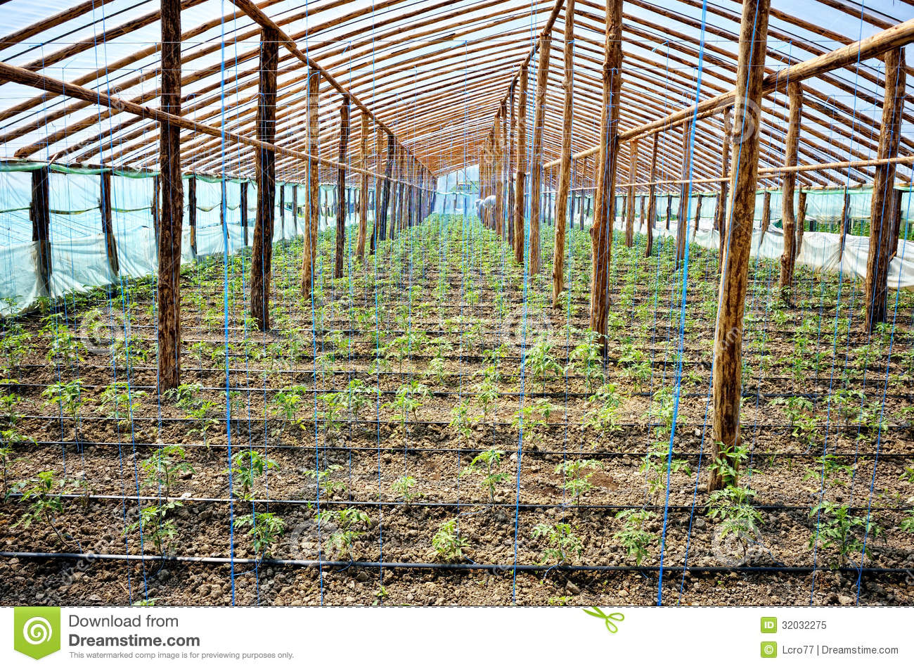 A Sample Greenhouse Farming Business Plan Template Big Greenhouse Royalty Free Stock Photo Image 32032275