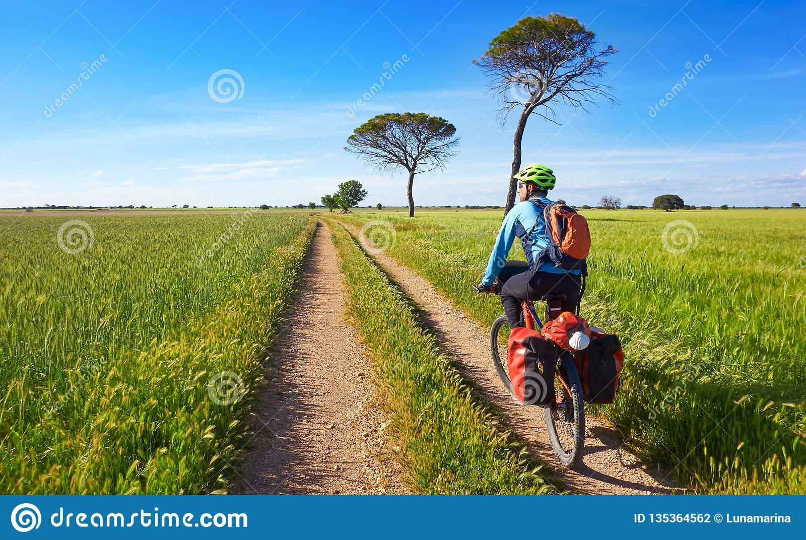 Camino Frances On Bike Biker By Camino De Santiago In Bicycle Stock Photo Image Of