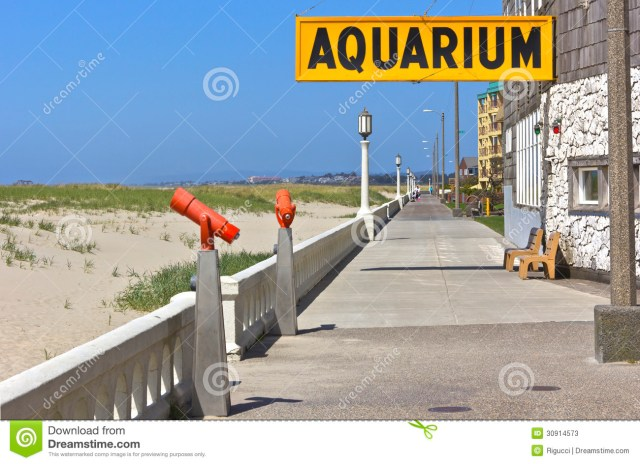 Aquarium fish near me fish stores near me find local for Fishing tackle store near me