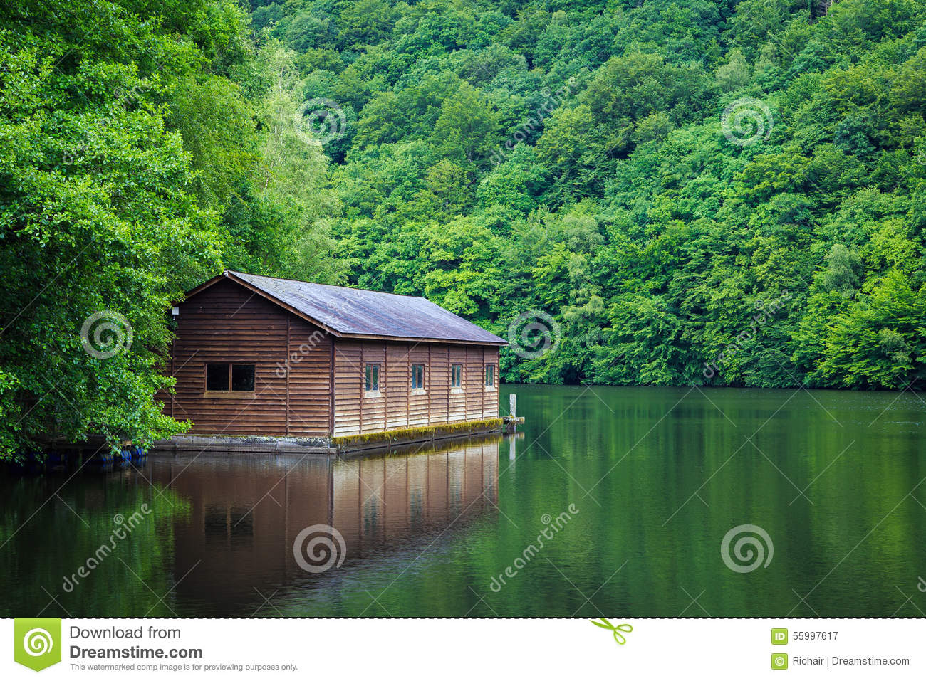 3d Fish Wallpaper Download Cabin On The Lake Stock Image Image Of Lush Trees