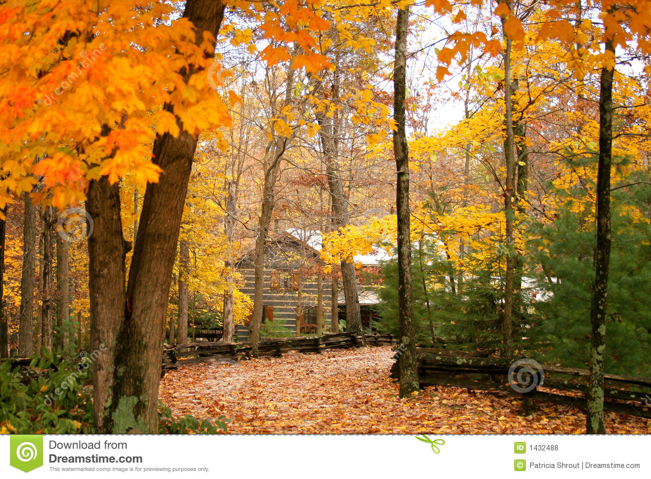 Fall Cabin The Woods Wallpaper Cabin In The Woods With Autumn Royalty Free Stock Photos