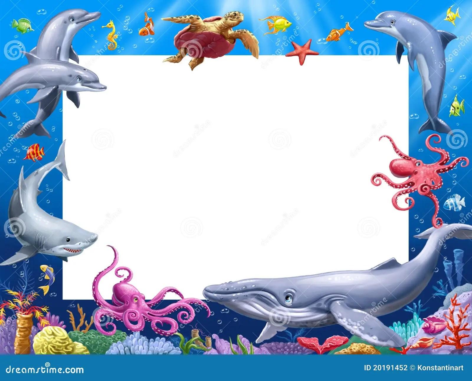Animal Print Wallpaper Border Cartoon Frame Stock Illustration Image Of Cartoon Frame