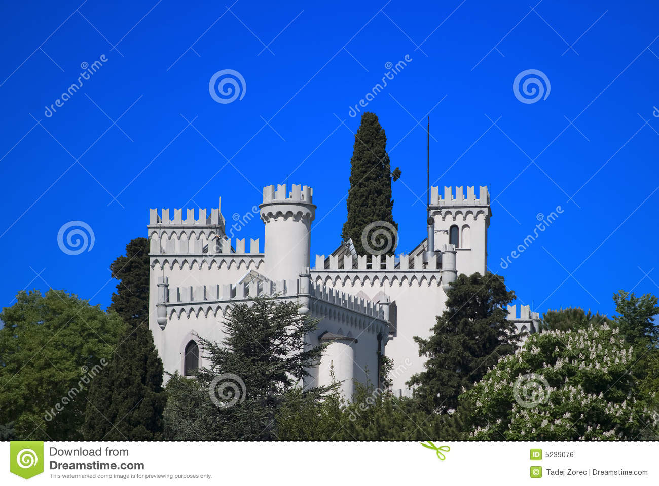 Mr White Koper Castle Royalty Free Stock Image Image 5239076