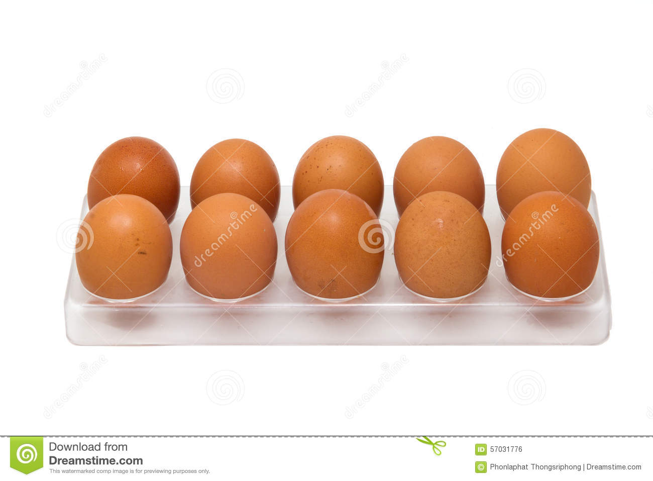 10 Chicken Eggs In Egg Tray Stock Photo Image Of Protein