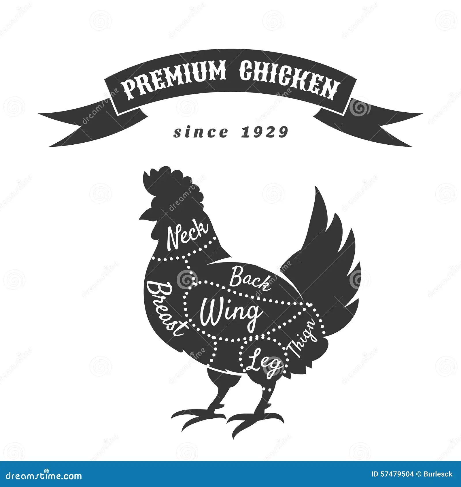 chicken cuts diagram stock vector