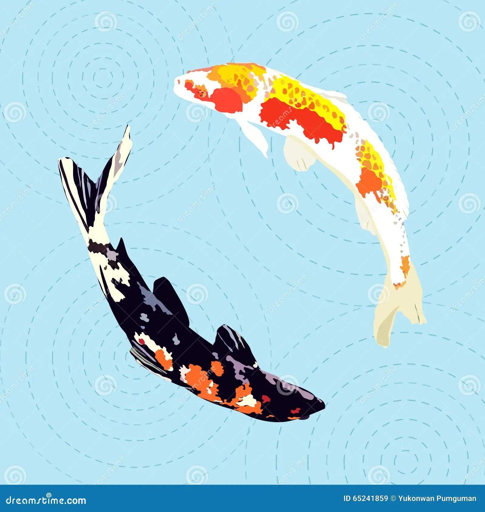 Koi Fish 3d Wallpaper Free Download Chinese Carp Japanese Koi Fish Vector Illustration Stock