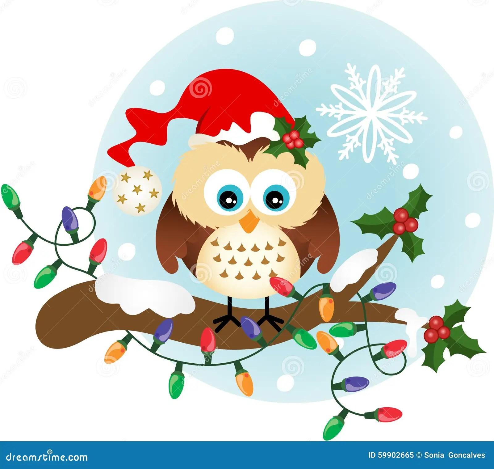 Cute Penguin Wallpaper Hd Christmas Owl On Holly Branch Stock Vector Illustration