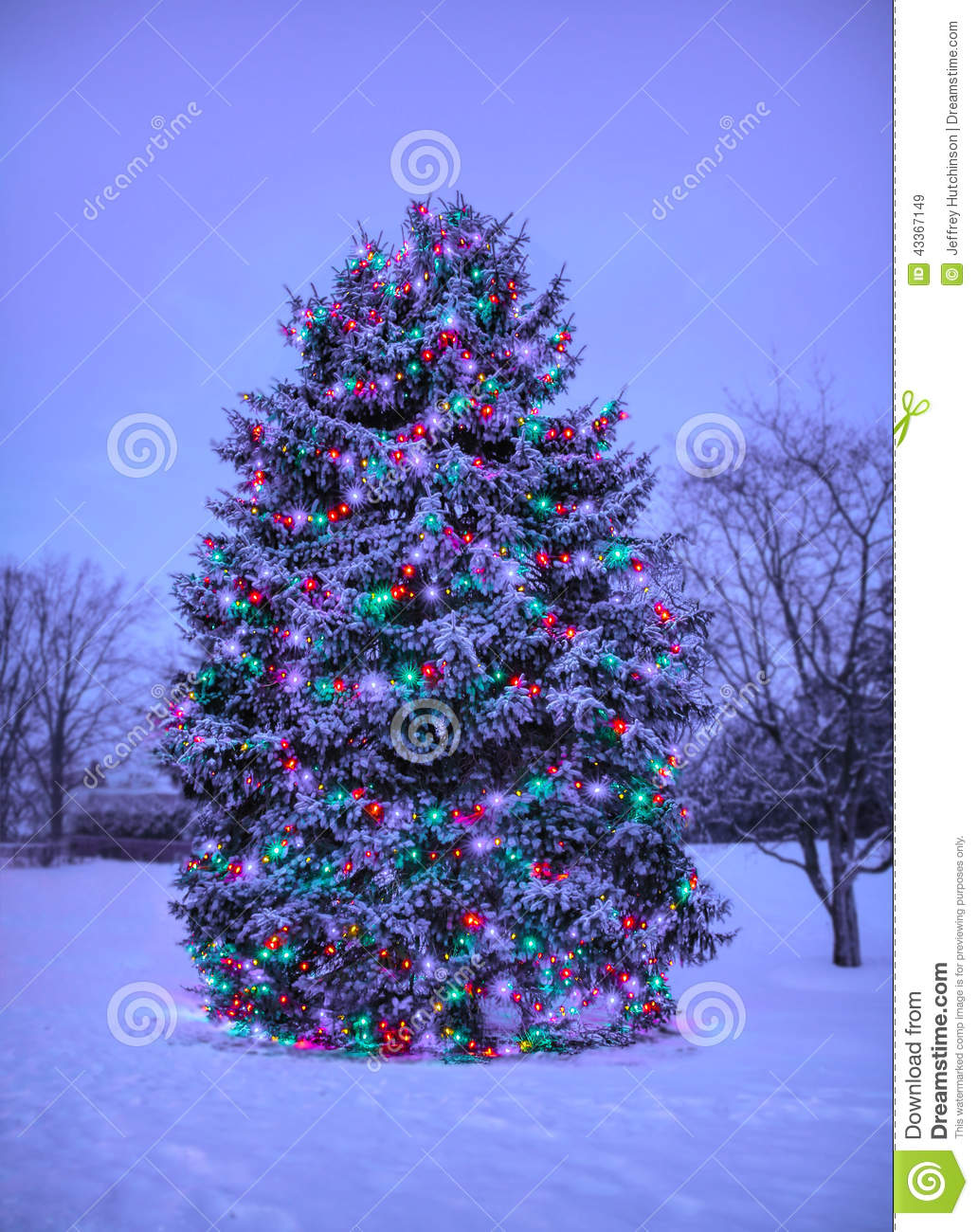 Live Snow Falling Wallpaper For Desktop Christmas Tree With Lights Outside In Snow Stock Image