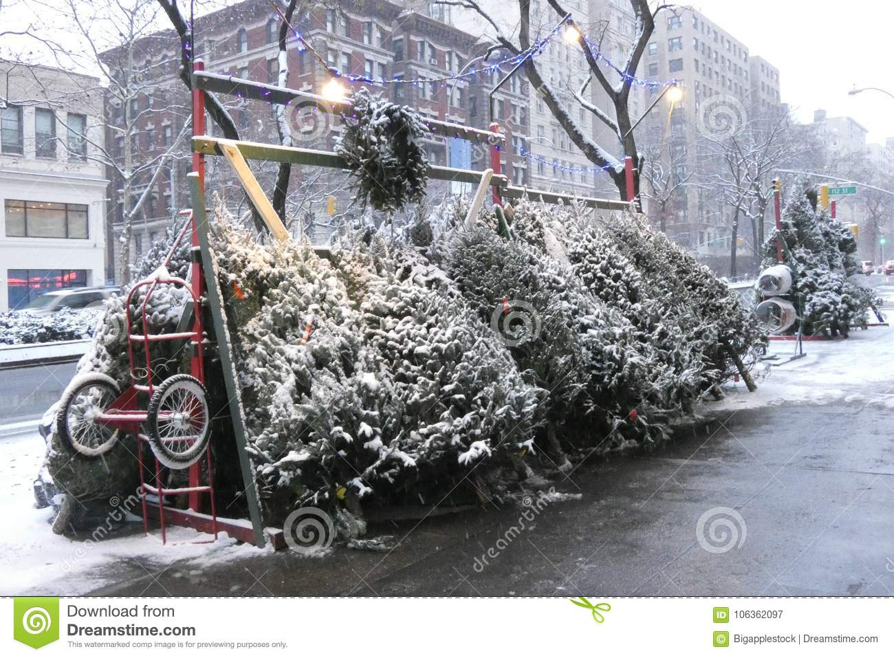 Christmas Tree Stand For Sale Christmas Tree Stand Stock Image Image Of Christmas 106362097