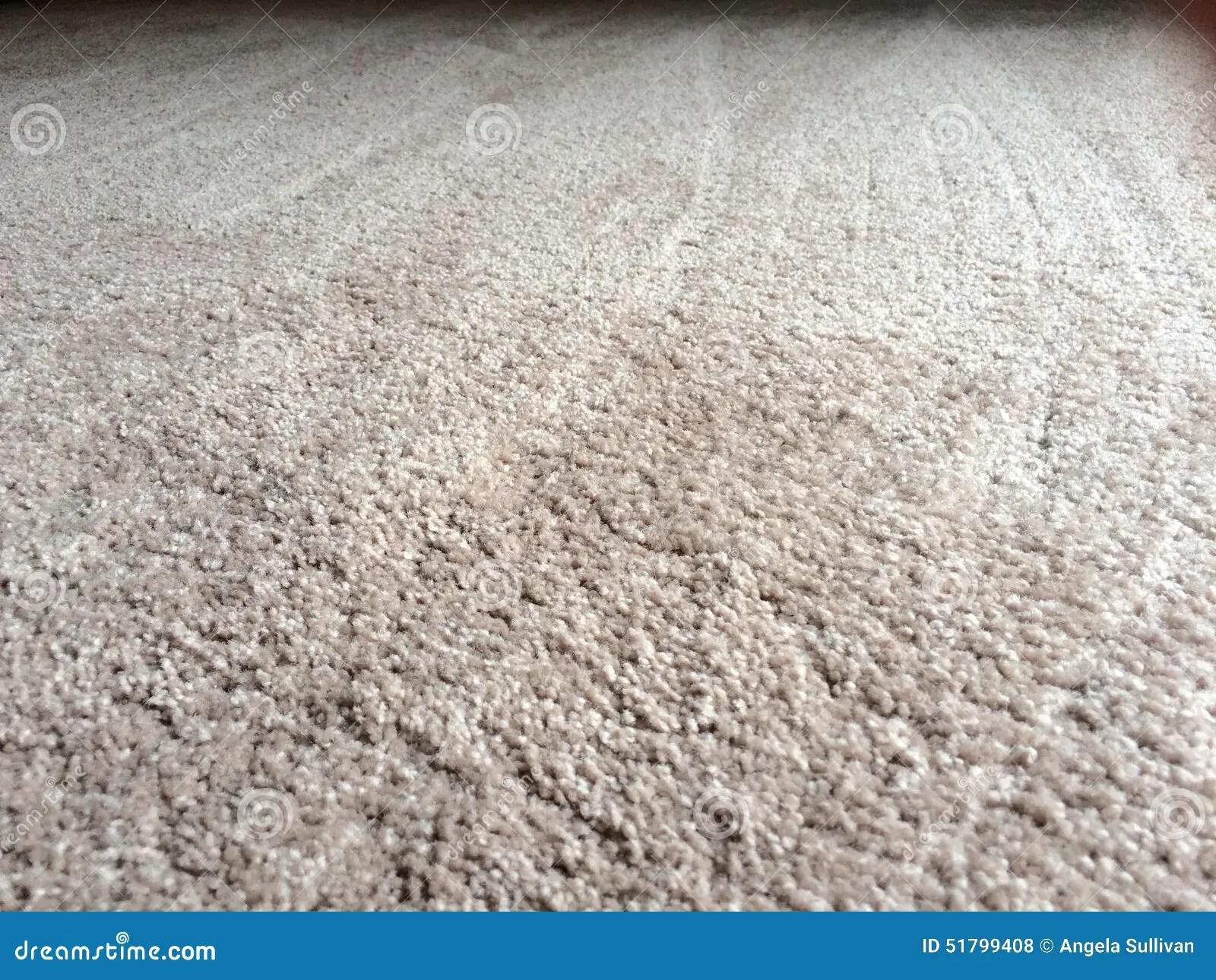 Clean Plush Carpet Floor Stock Photo Image 51799408