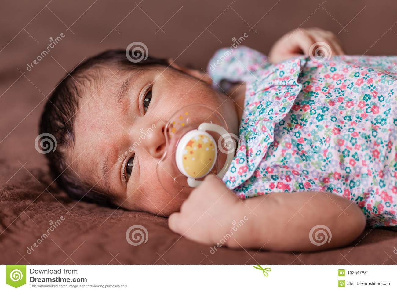 Newborn Babies For Dummies Cute Two Weeks Old Newborn Baby Girl With A Pacifier Stock