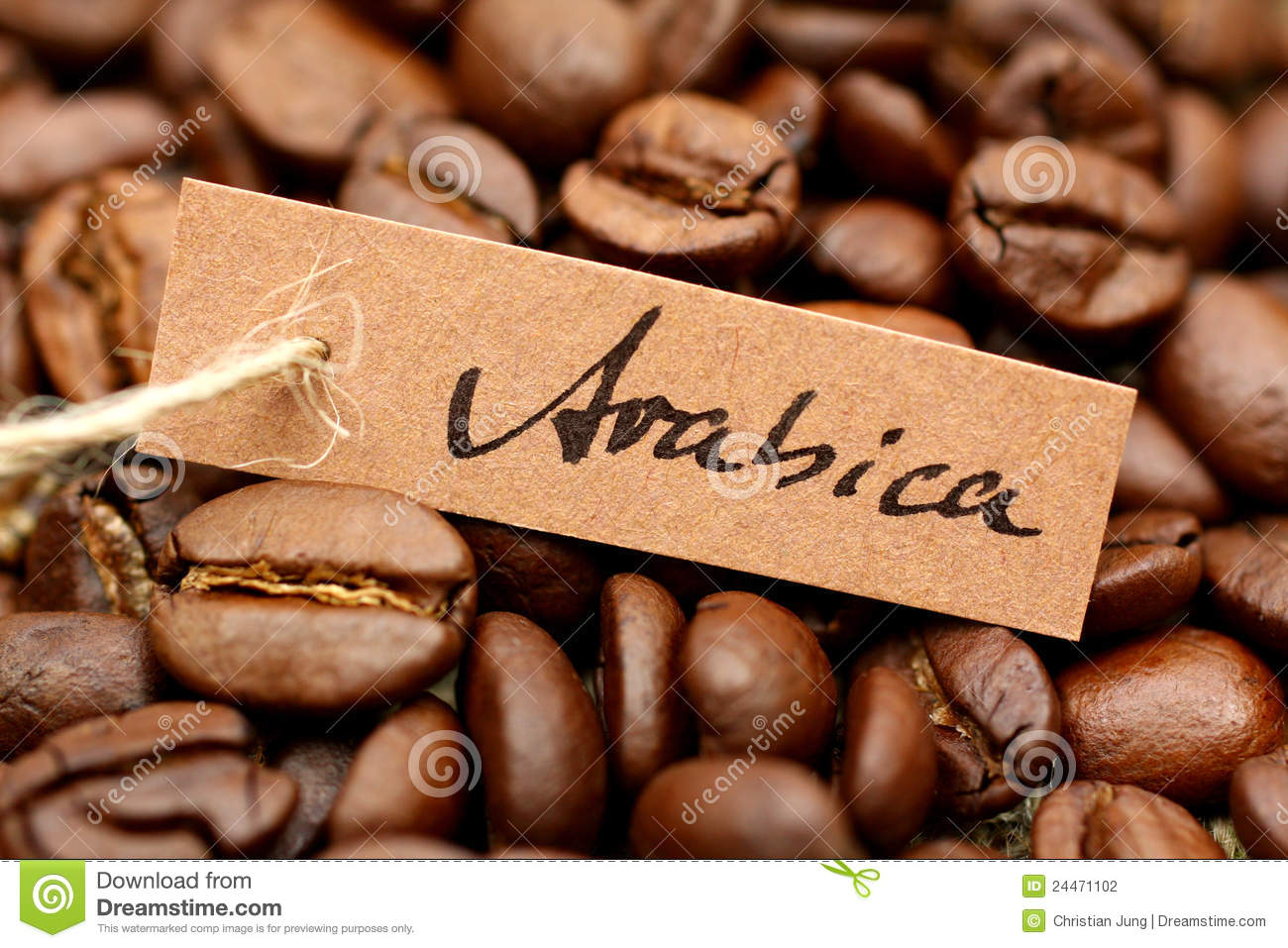 Coffee Arabica Coffee Bean Coffee Beans Arabica Stock Photography Image 24471102