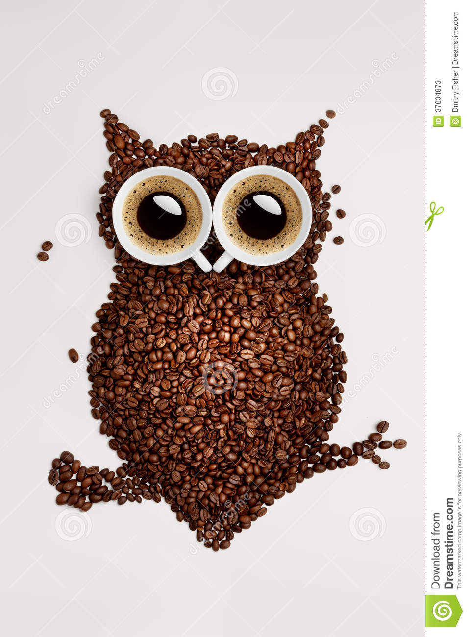 3d Animation Wallpaper For Pc Download Coffee Owl Stock Photos Image 37034873