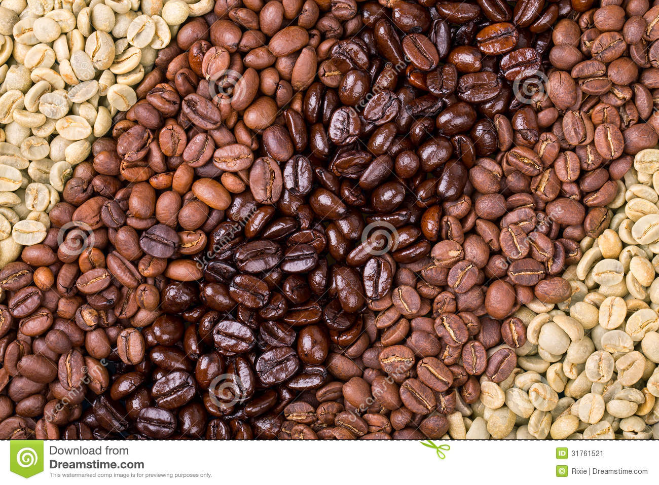 Unroasted Organic Arabica Coffee Beans Coffee Selection Stock Image Image 31761521