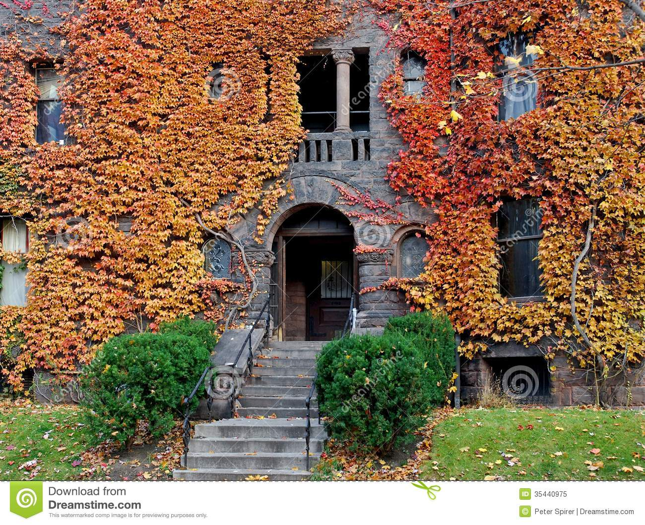 Leaves Fall Desktop Wallpaper College Building With Fall Ivy Royalty Free Stock Photo