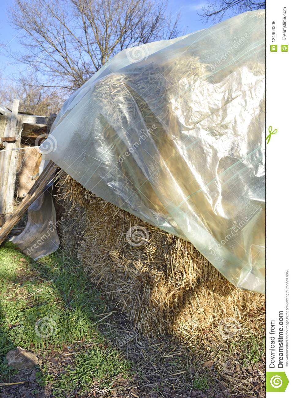 Feed Hay Country Feed Hay On Farm Stock Image Image Of Covered 124903205