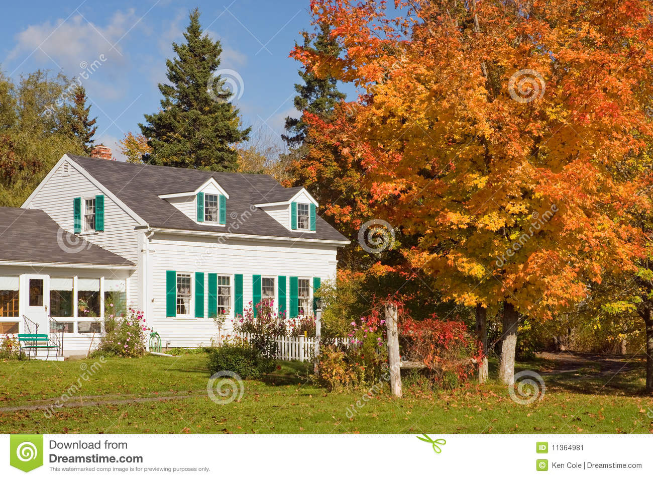 New England Fall Wallpaper Free Country House In Autumn Stock Image Image 11364981
