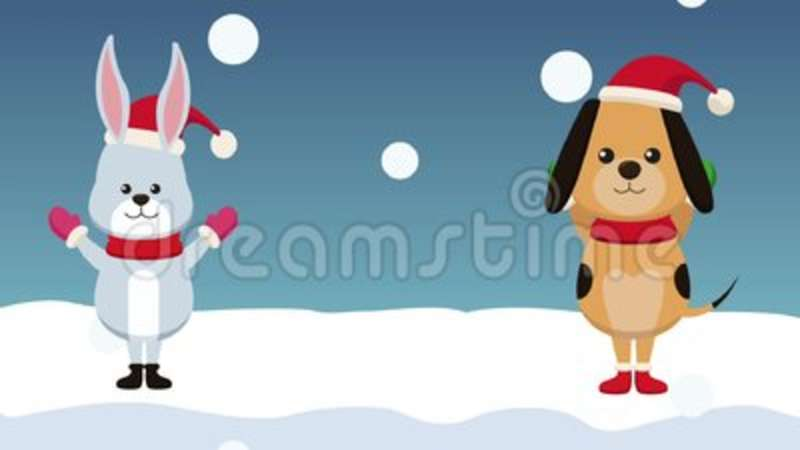 Christmas Card And Cute Animals HD Animation Stock Footage - Video