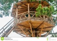Cute small tree house stock image. Image of ladder, garden ...