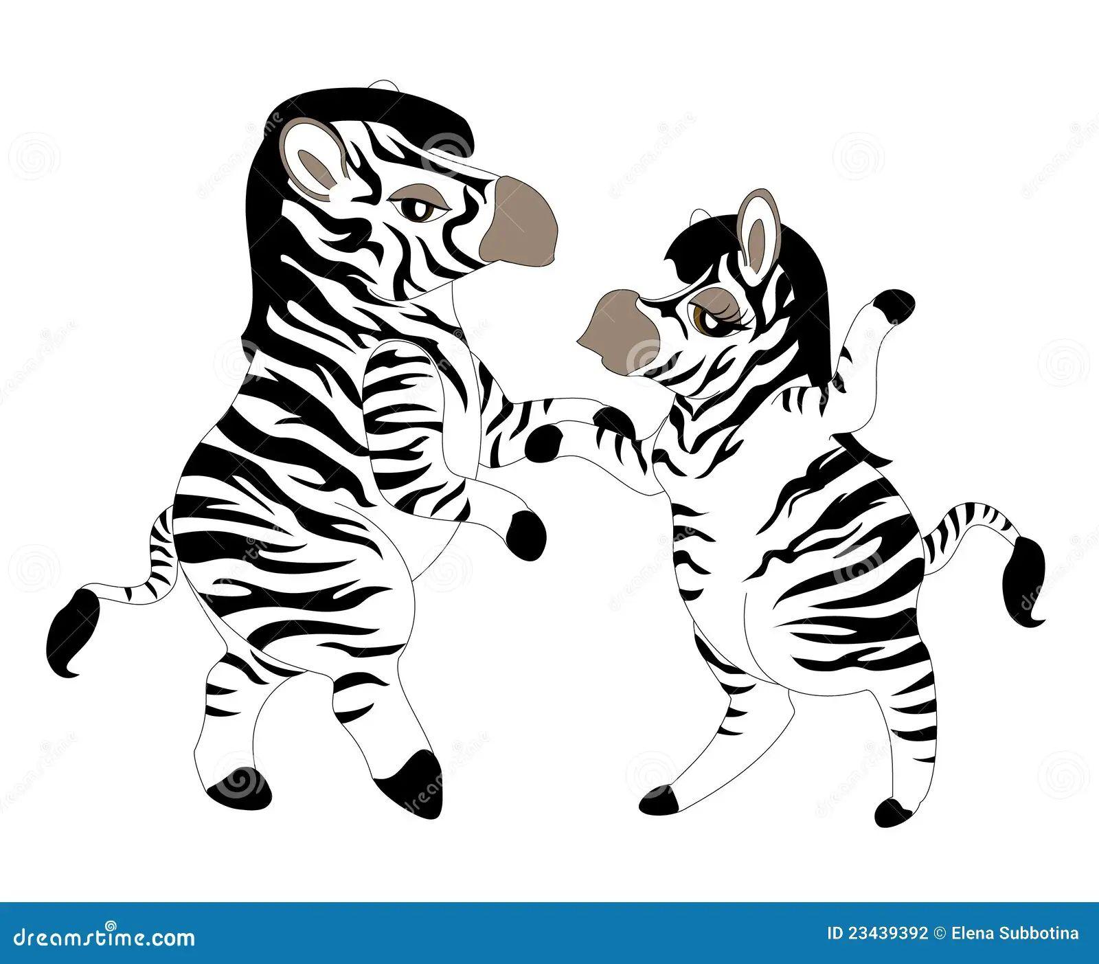 Zebra Animal Royalty Free Stock Photography Auto Electrical Wiring Epc Novyc Leds Diagram Dancing Zebras