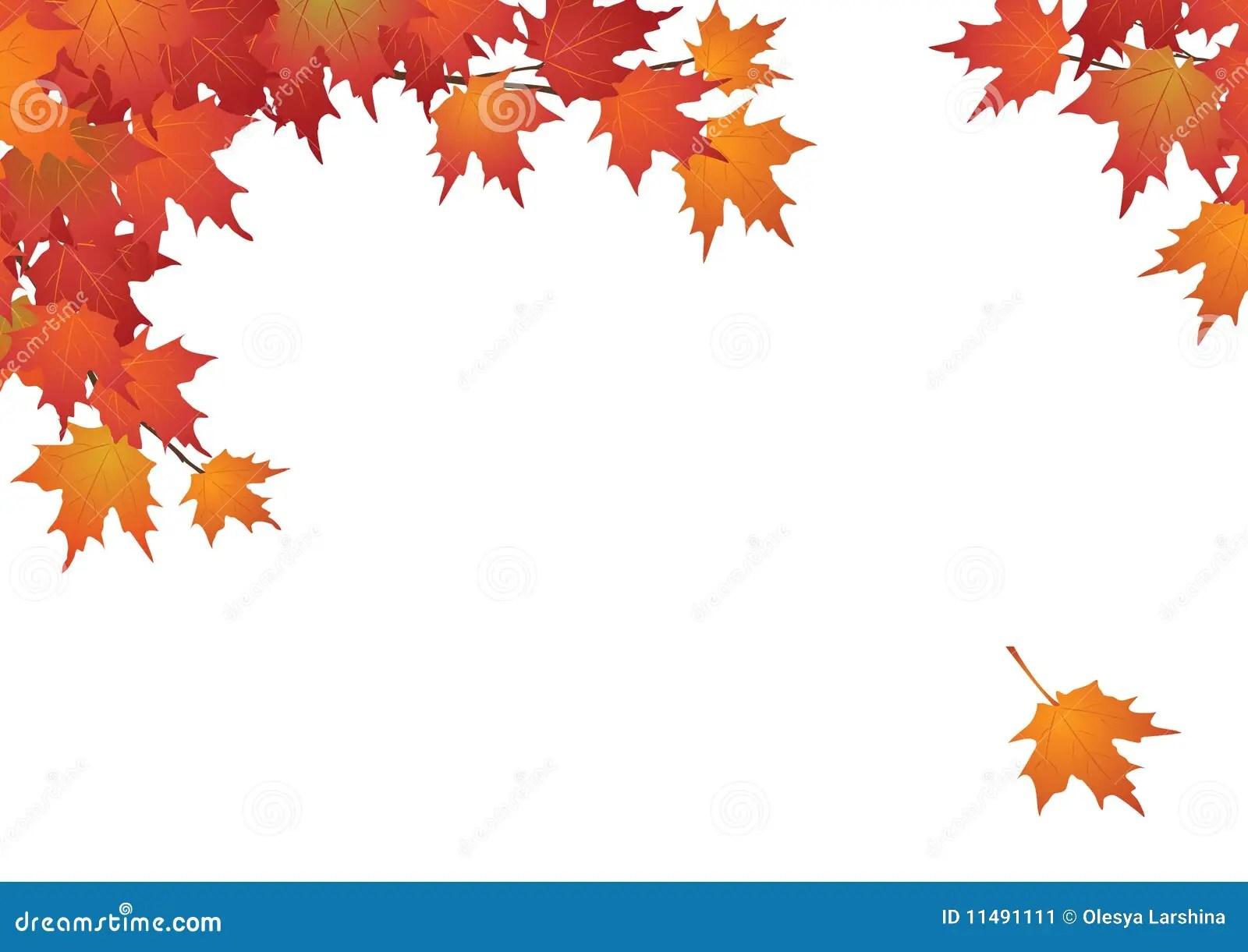 Fall Leaves Wallpaper Border De Bladeren Van De Achtergrond Herfst Frame Stock