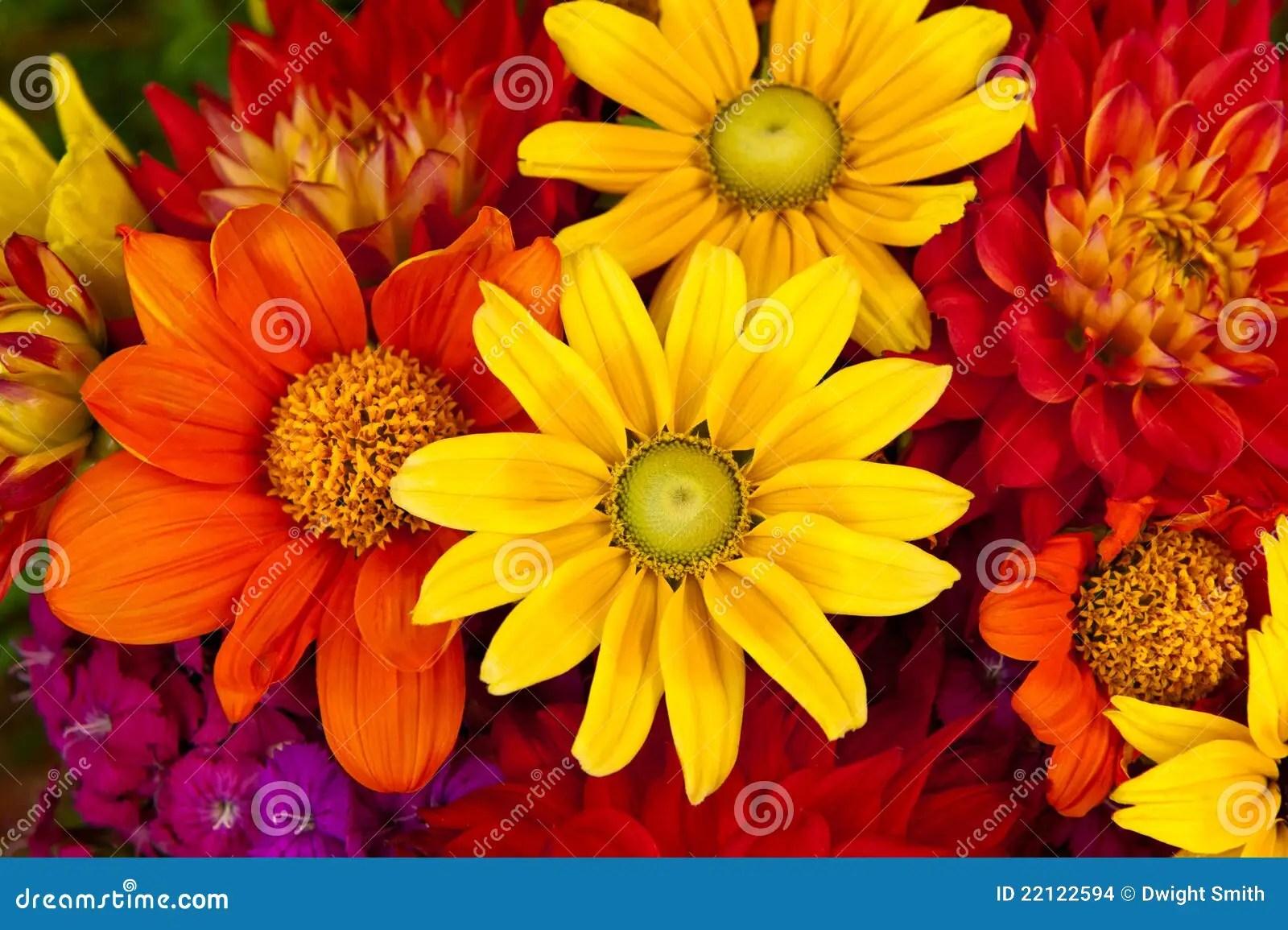 Fall Leaves Wallpaper Powerpoint Background De Bloemen Van De Herfst Stock Afbeeldingen Beeld 22122594