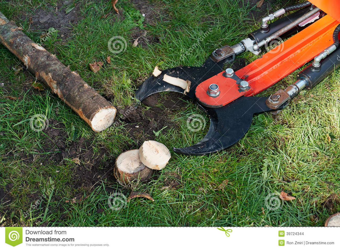 Tree Cutter Tree Cutting Machine Stock Images Download 2 722 Royalty Free Photos