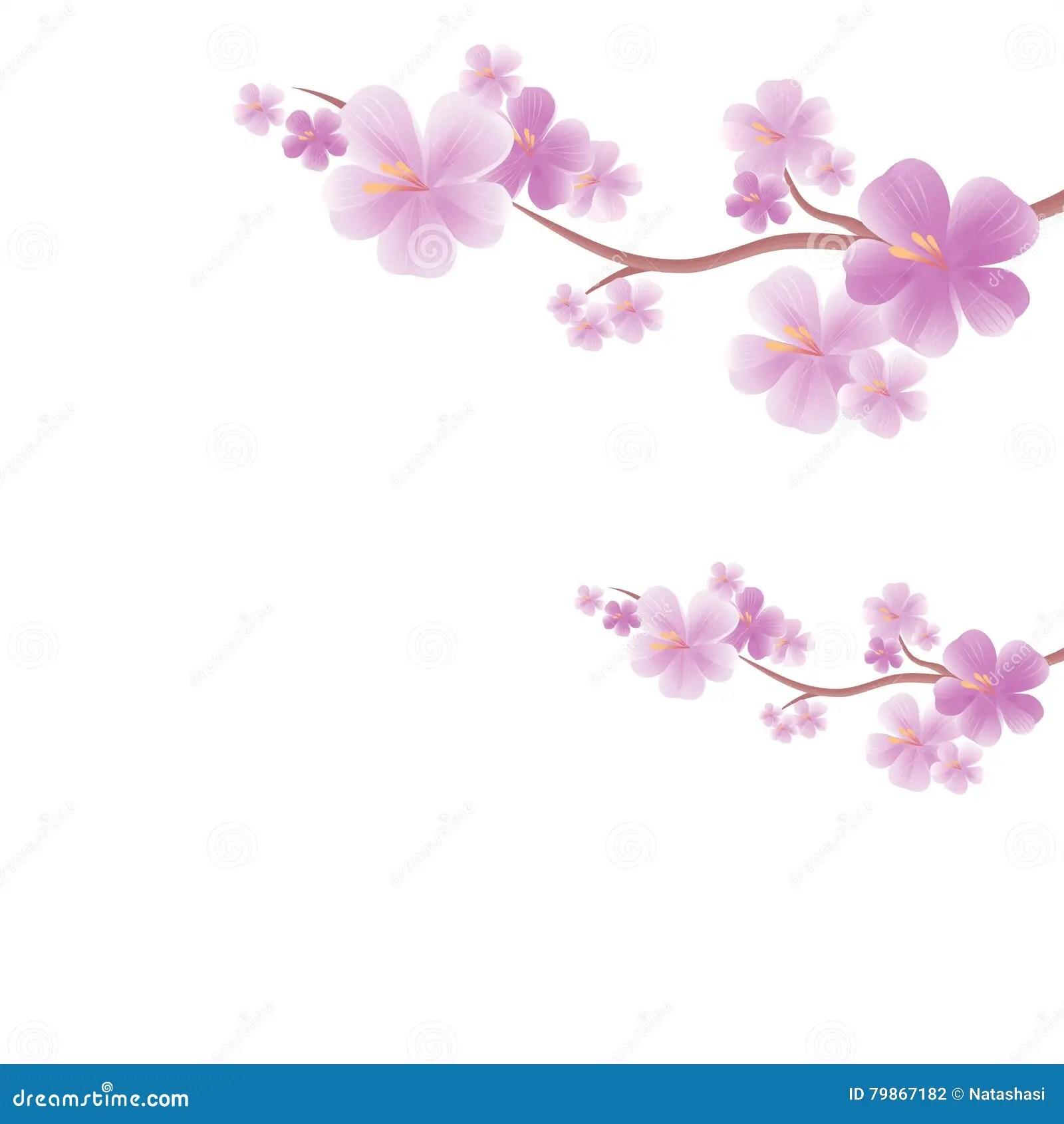 Falling Cherry Blossoms Wallpaper Dise 241 O De Las Flores Las Ramas De Sakura Aislaron En El