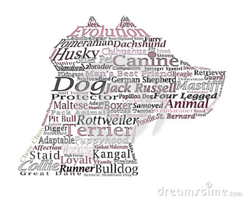 Dog Breed Canine Word Cloud Typography Illustration Concepts Ide