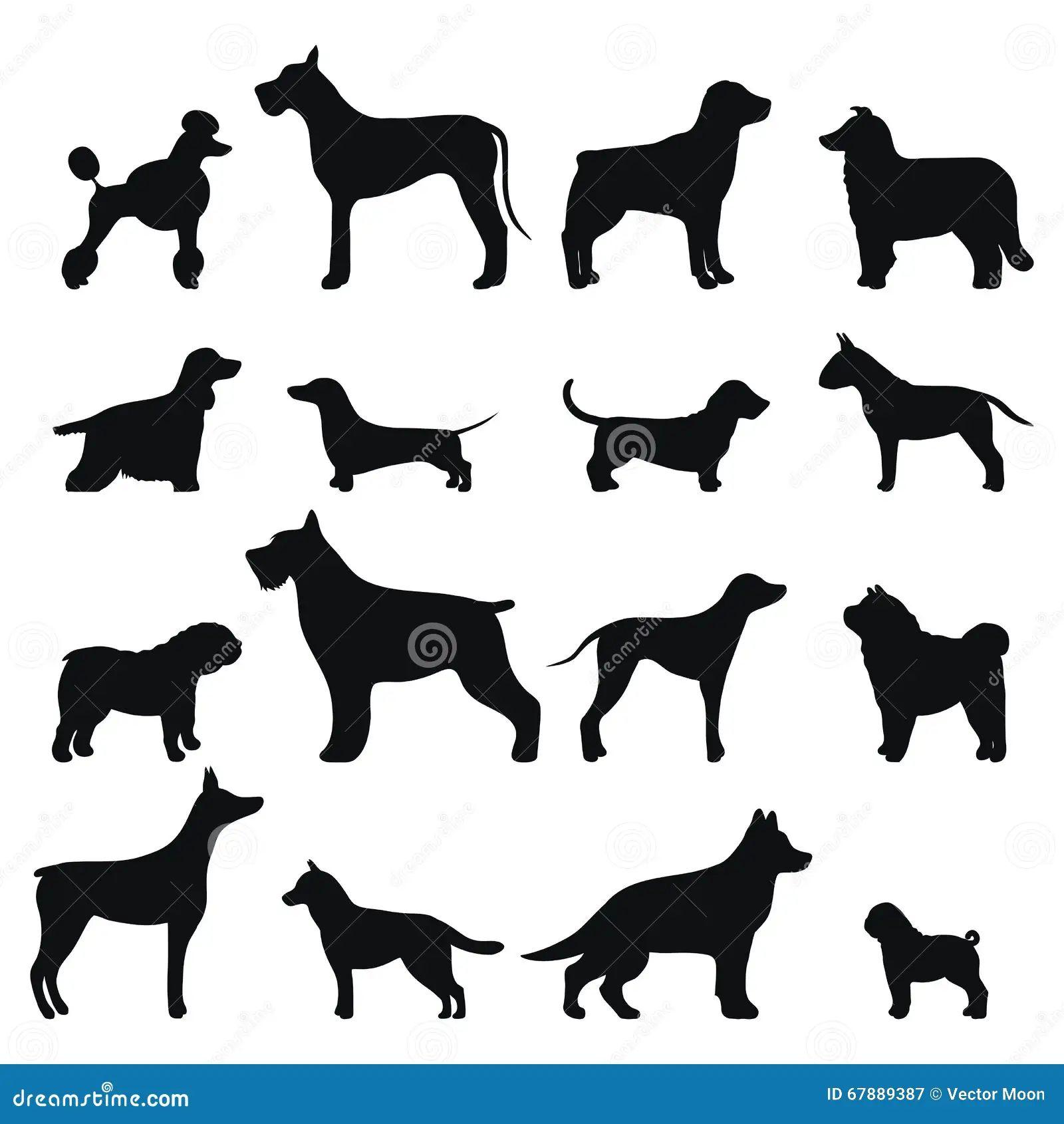 dog vector illustration