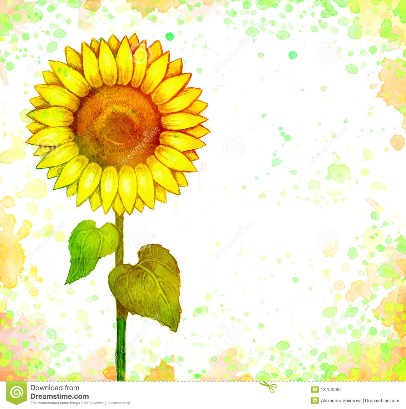Cute Bees Wallpaper Drawing Of Sunflower Stock Illustration Image Of Colorful