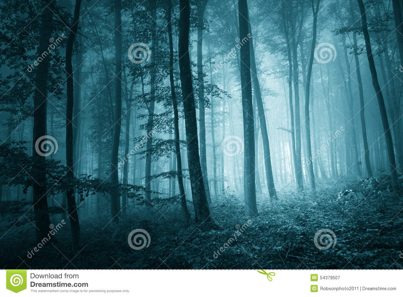Vector Wallpaper Fall Colors Dreamy Mystic Blue Color Foggy Forest Stock Image Image