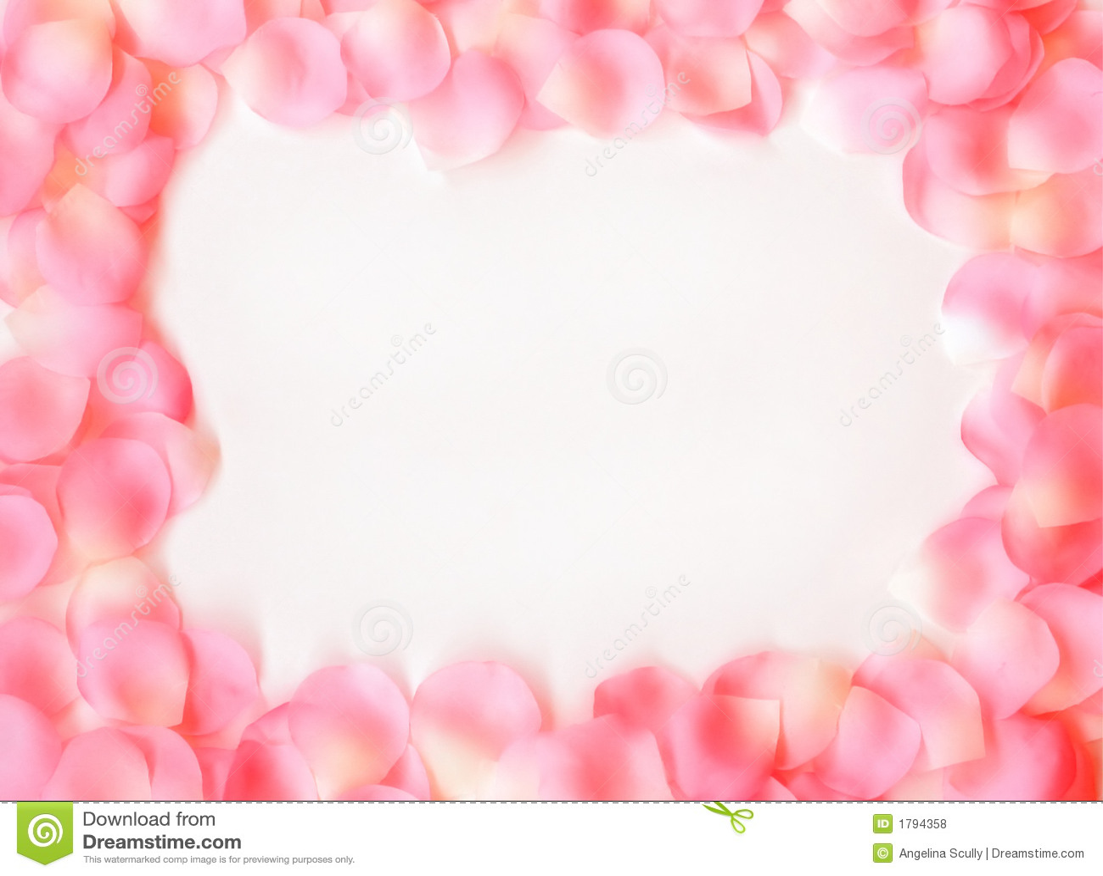 Falling Rose Petals Wallpaper Dreamy Rose Petal Frame Stock Photo Image Of Frame