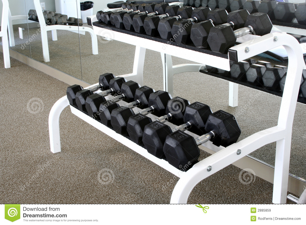 A Dumbbell Rack Stock Image Image Of Fitness Barbel