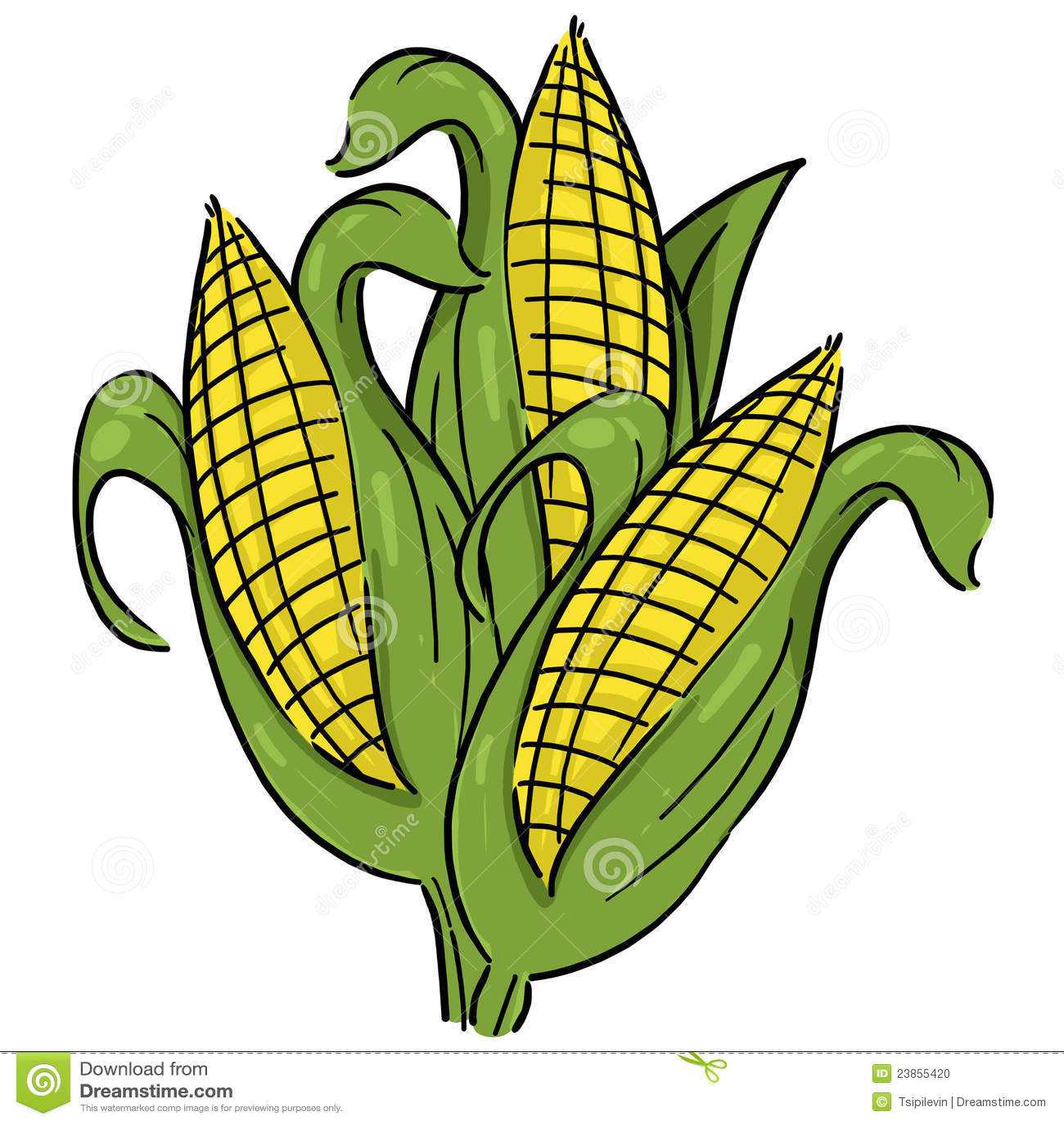 Free Fall Harvest Wallpaper Ears Of Corn Illustration Stock Illustration Illustration