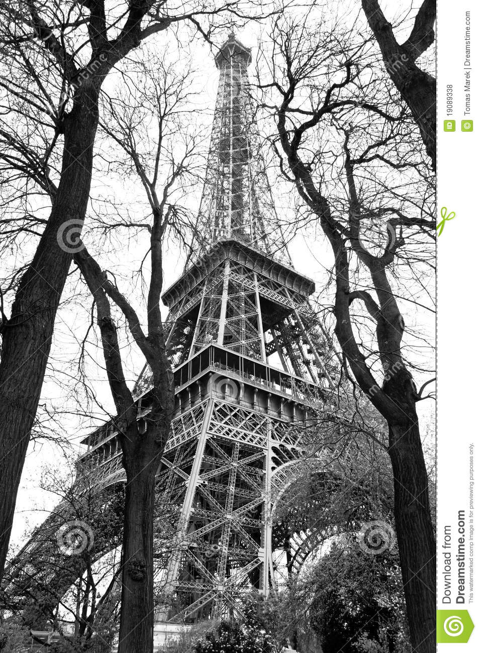 Stock Image Dreamstime Eiffel Tower In Black And White Style Paris Stock Photo