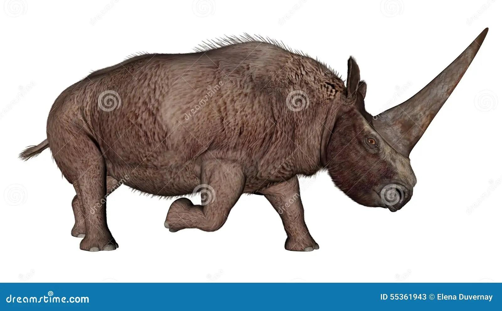 Walking With Dinosaurs 3d Wallpaper Elasmotherium Dinosaur Rhinoceros 3d Render Stock