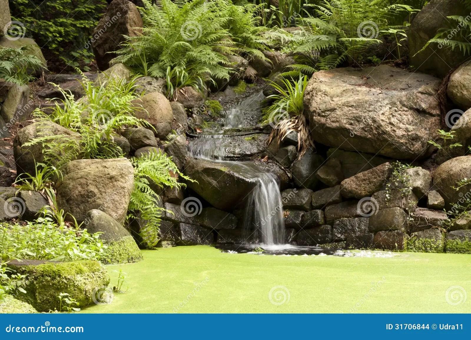 Waterval In Tuin : Tuin waterval tuin van tulpen en waterval stock foto afbeelding