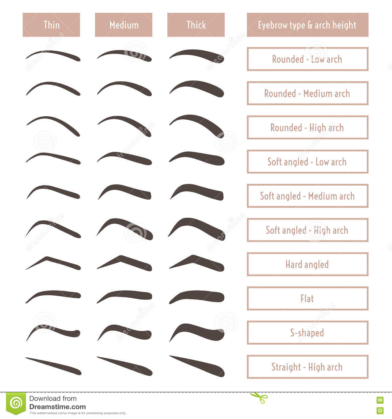 Classic Table Shapes Eyebrow Shapes Various Brow Types Vector Table With Eyebrows And