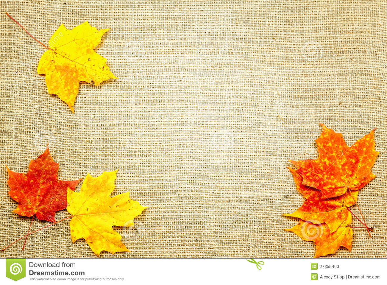 Fall Harvest Iphone Wallpaper Fall Background Stock Photo Image Of Nature Background