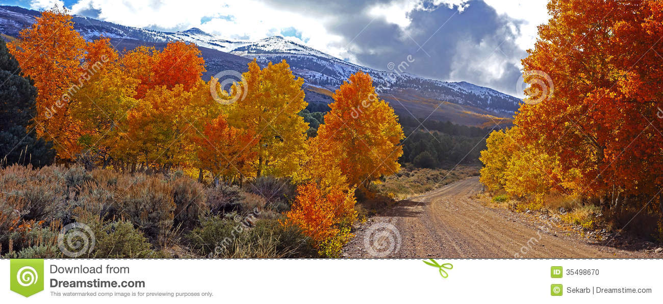 4k Fall Michigan Wallpaper Fall Foliage At The Eastern Sierra Nevada Mountains In