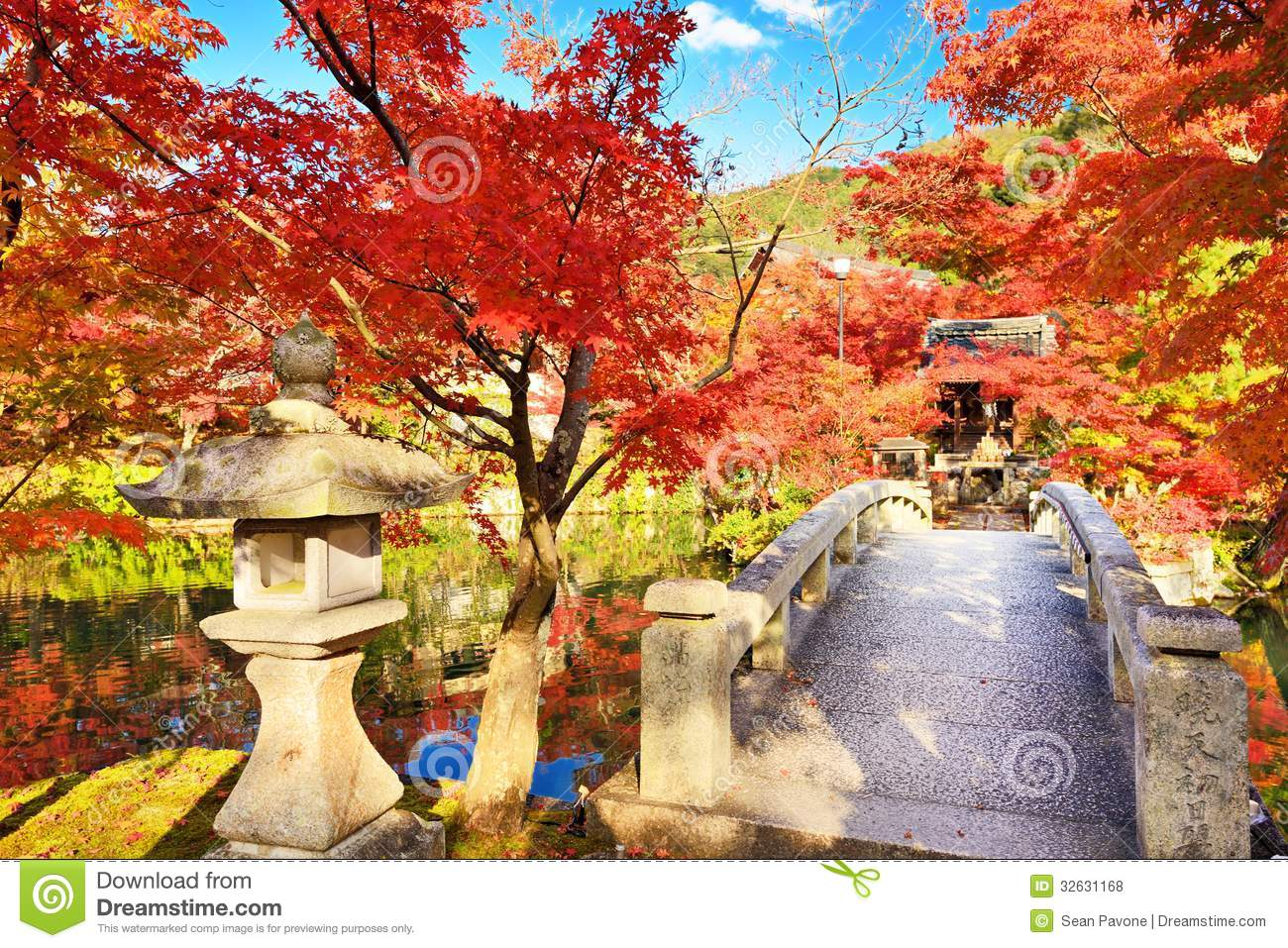Free Wallpaper Fall Colours Fall Foliage In Kyoto Stock Photo Image Of Kyoto Eikan